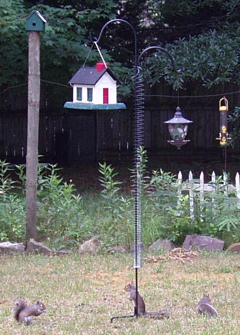 how baffle of in out genie keep stop the with to squirrels those feeder sm bird pesky garden